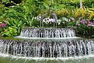 Waterfall, Sculpture & Orchids. by Trish Meyer