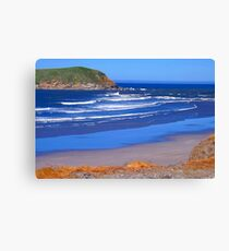 Southern Oregon Beach Canvas Print