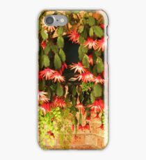 A Spring Show iPhone Case/Skin