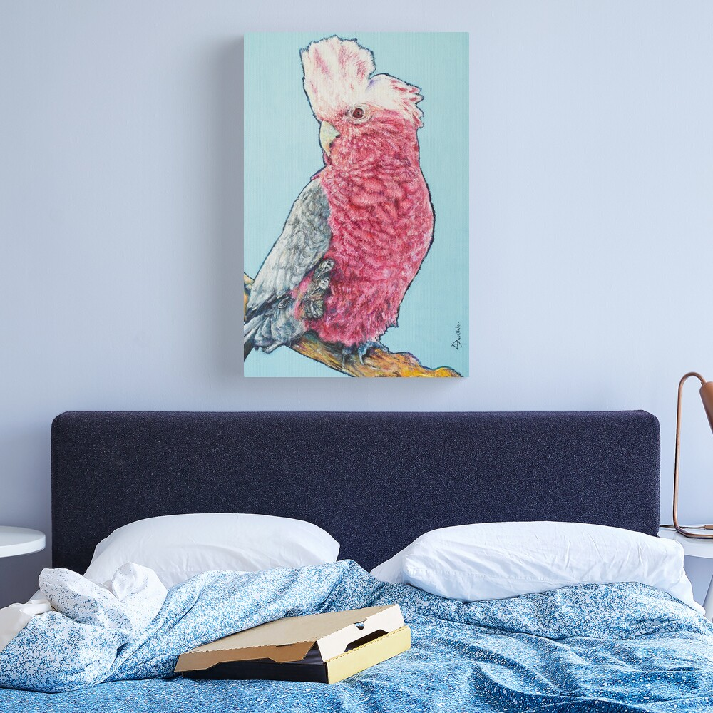 Dusty Galah Canvas Print