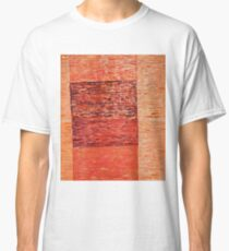 What exists beyond the frame Classic T-Shirt