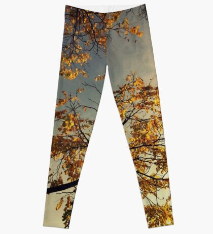 A Day in Autumn Leggings