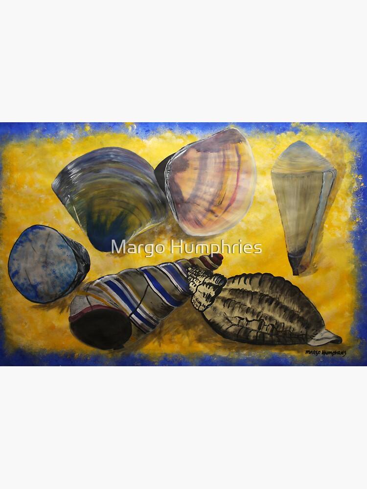 Sea Shells by kasarnDesigns