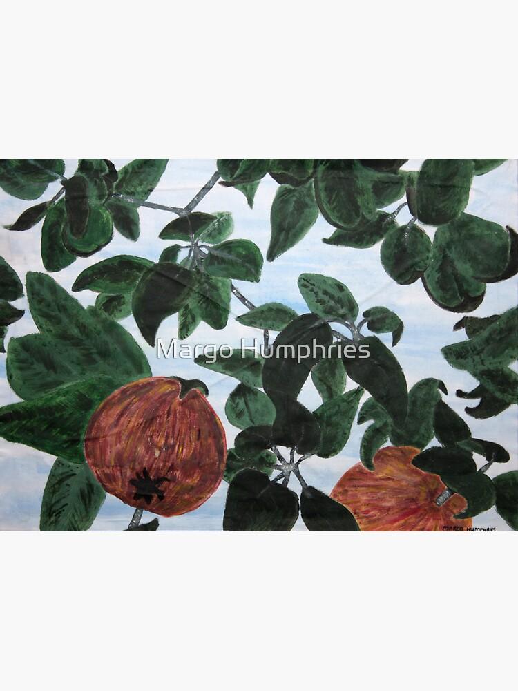 Appletree by kasarnDesigns