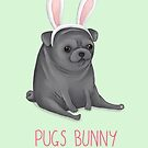 Pugs Bunny by Katie Corrigan