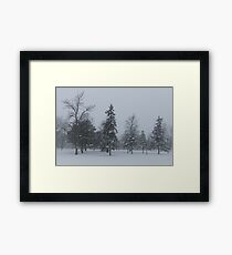 A Cold December Morning - Snowstorm in the Park Framed Print