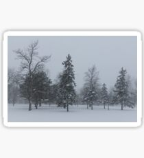 A Cold December Morning - Snowstorm in the Park Sticker