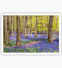 Bluebells in Spring Sticker