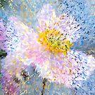 Anemone mosaic by RosiLorz