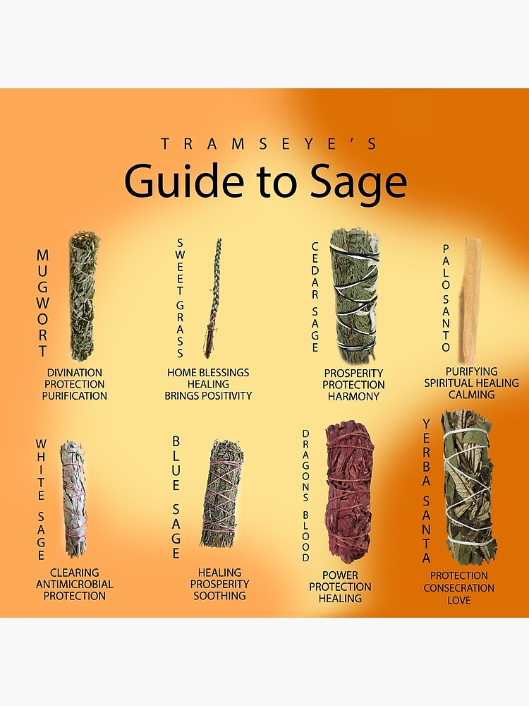 Sage Guide by tramstraffic