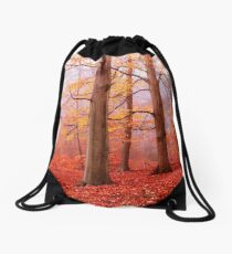 Burnham Beeches. November Drawstring Bag