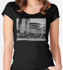 Sculpture Women's Fitted Scoop T-Shirt
