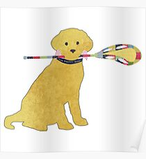 Preppy Yellow Lab Lacrosse Dog Poster