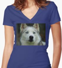 Look Into My Baby Blues!!! - Siberian Husky - NZ Women's Fitted V-Neck T-Shirt