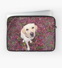 Lab in the Leaves Laptop Sleeve