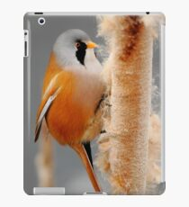 On The Winter Forage iPad Case/Skin