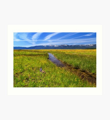 Goodrich Creek Art Print