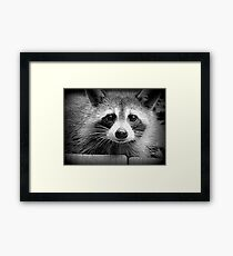 Questioning Face Framed Print
