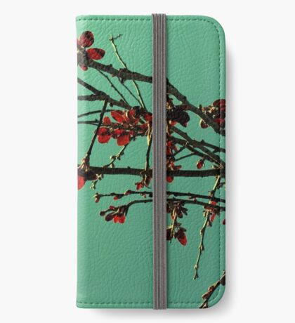 Orientique iPhone Wallet