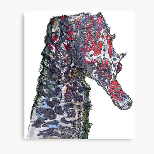 Lady Jayne Seahorse of Manly Nets Metal Print