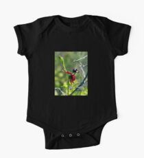 The Flying Duck Orchid Kids Clothes
