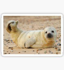 Beach Baby Sticker