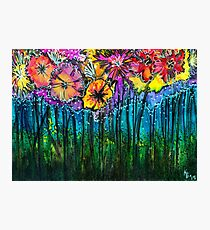 Flowers That Only  Fireflies See - Kerry Beazley Photographic Print