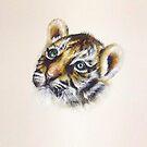 Tiger Cub Watercolour by Jacqui Frank