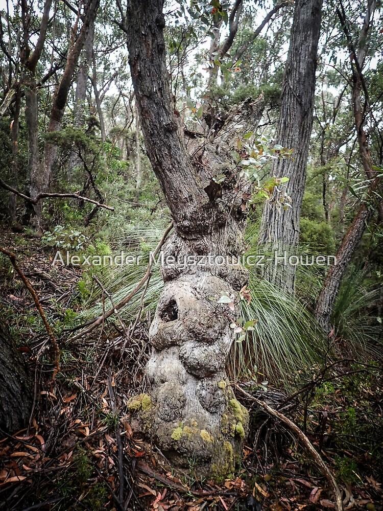 Character tree by Alexander Meysztowicz-Howen