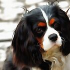 Portrait Of A King Charles Cavalier Spaniel by taiche