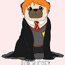 «Ron Pugsley!» de jennisney