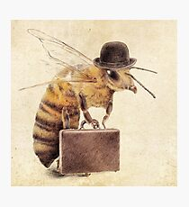 Worker Bee Photographic Print