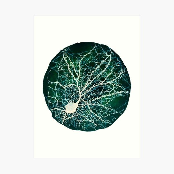 geeks de medicina y psicología por ahí!  Obra: representación de la neurona cultivada en el acuario Lámina artística