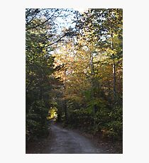 The dirt road golden autumn moment Photographic Print
