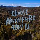 Choose Adventure by Candy Jubb