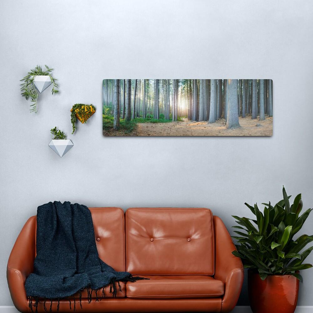 Sugar Pines, Laurel Hill, New South Wales, Australia Metal Print