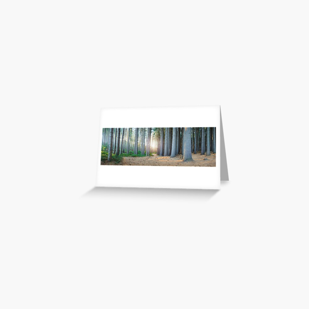 Sugar Pines, Laurel Hill, New South Wales, Australia Greeting Card