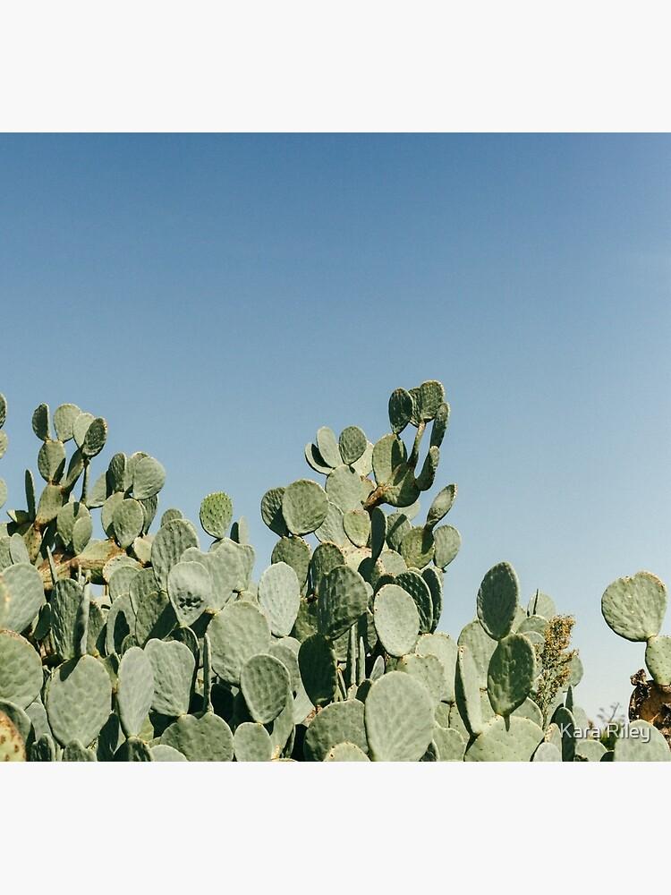 Großer stacheliger Birnen-Kaktus gegen blauen Himmel von karariley