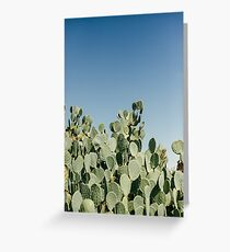 Large Prickly Pear Cactus against Blue Sky Greeting Card