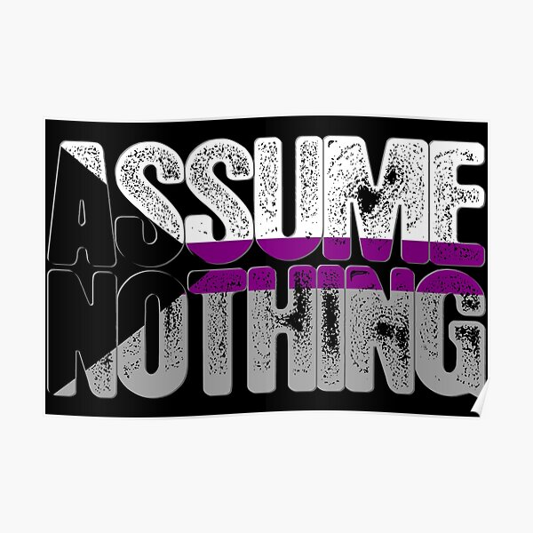 Assume Nothing Demisexual Pride Poster