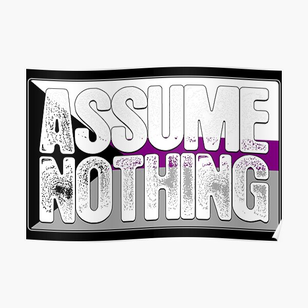 Assume Nothing Demisexual Pride Flag Poster