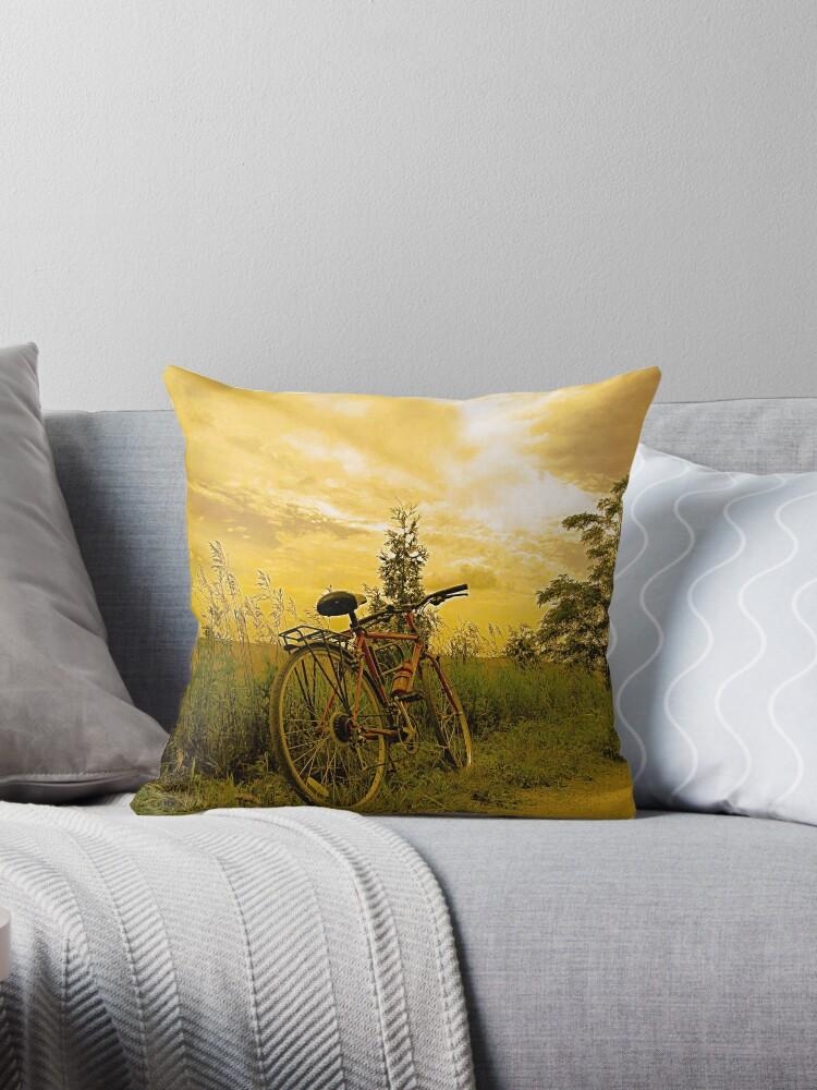 Biking at Sunset by ninasilver