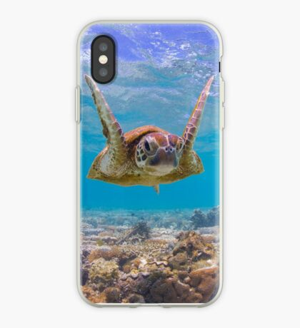 Joyful turtle iPhone Case