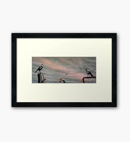 Top Shot Macca! Framed Print