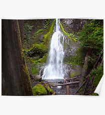Marymere Falls - The Reward Poster