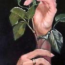 a rose by Hidemi Tada