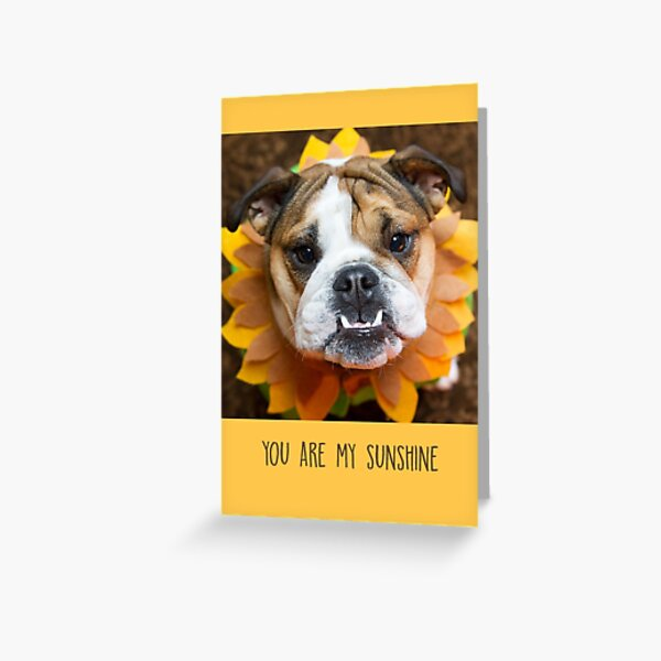 You Are My Sunshine, Yellow Greeting Card