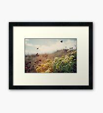 Meadow of Wildflowers Framed Print