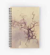 Olfactory bulb neuron - pencil and watercolor Spiral Notebook