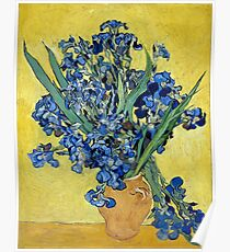 Vincent van Gogh Irises Poster